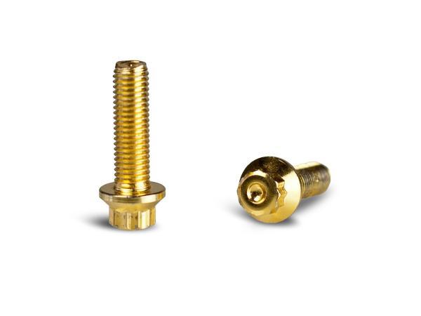 M7x24mm Verbindungsschraubenkit Gold VPE 20